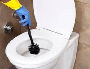 Washroom & Toilet Cleaner